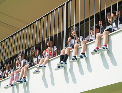 城市中的兒童樂學森林 – 新北市成德幼兒園