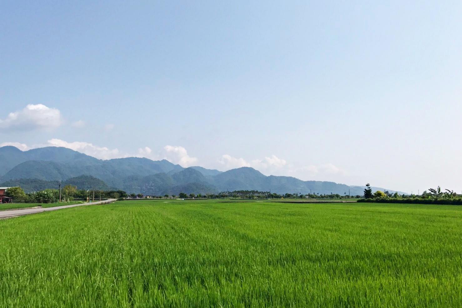 德築-DEZU-project-三星八分田休閒農場-architecture-building-surroundings