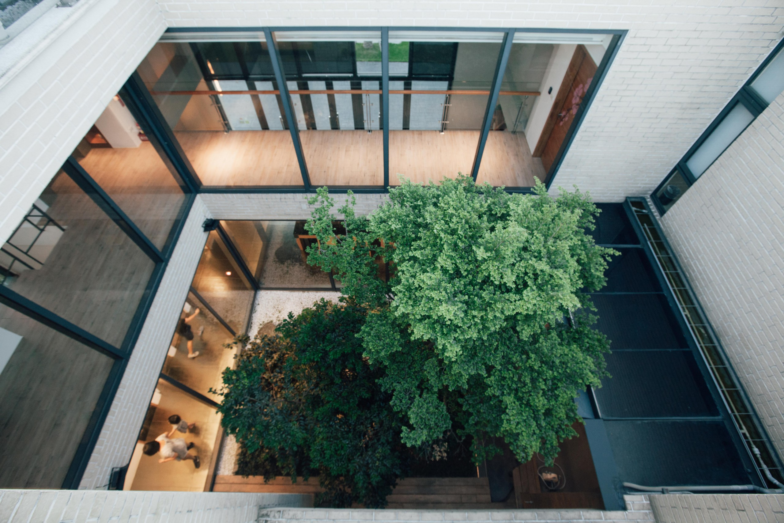德築-DEZU-project-日光綠築-architecture-interior-5