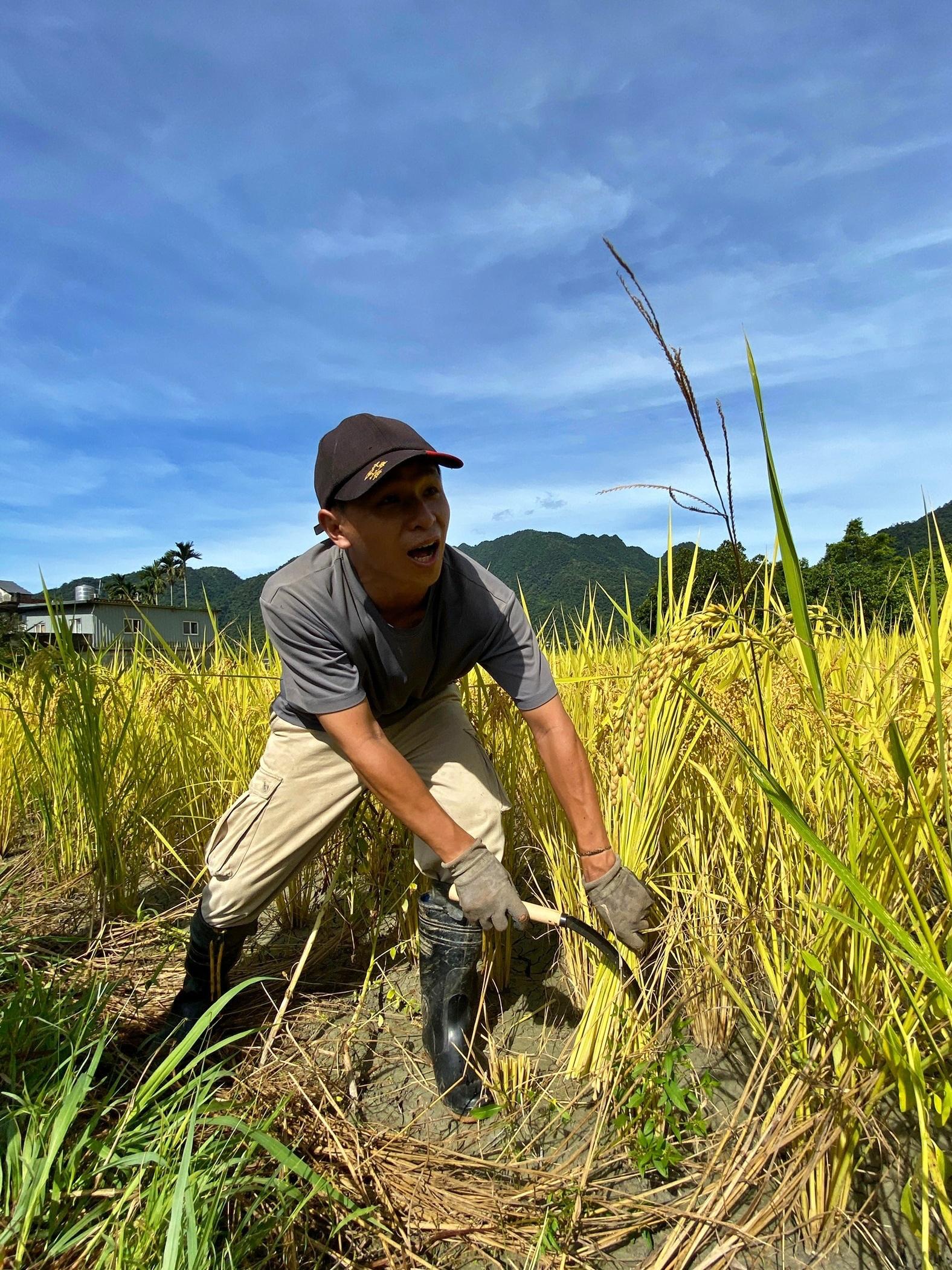 德築-DEZU-workshop-rice-11